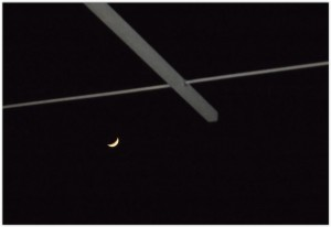 moon and ant